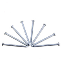 Electro concrete nails hot dipped galvanized concrete nails China manufacture