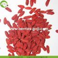 Approvisionnement d'usine Pure authentique non GMO Wolfberries