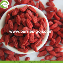 Factory Wholesale Nutrition Natur Malaysia Goji Berry