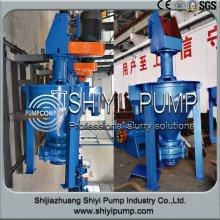 China Hersteller mineralischer zentrifugale Schaum Pumpe