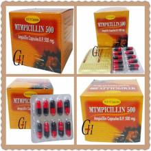 Antibióticos Ampicilina Cápsulas