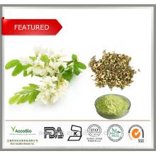100% Extracto de Hierbas Naturales Quercetina 98% Sophora Japonica Flor Sophora flavescens Ait