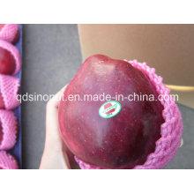 Super Huaniu Apple (buen gusto)