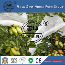 100% PP Anti-UV Protector in Polypropylene Nonwoven Fabric for Agriculture Cover