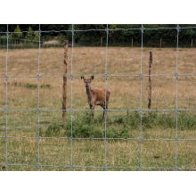 Galvanized Woven Wire Deer Farm Fence