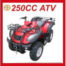 Новый 250cc бензиновый квадроцикл для продажи