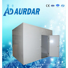 China Low Price Ice Cream Storage Cold Room Sale with High Quality