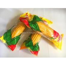 Maïs aux fruits sucrés savoureux de haute qualité