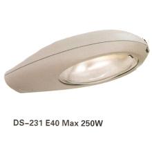 Street Light (DS-231)