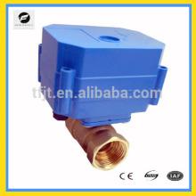 CWX 10mm BSP 9-24V/DC/AC series city mini motorized actuator appliance