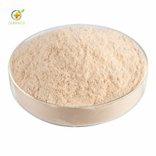 Chinese Medicine Herbal Agastache Rugosus Extract