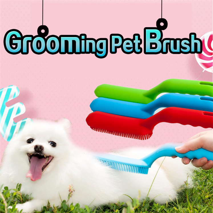 pet brush (2)