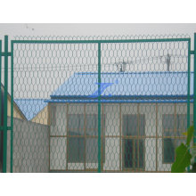 Good Quality Hexagonal Courtyard Wire Mesh Fences (TS-L28)