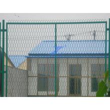 Хорошее качество шестигранный двор проволока сетчатых заборов (TS-L28)