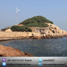 5000 Watt landwirtschaftliche Stromversorgung Lichtmaschine neue Windkraftanlage Energie