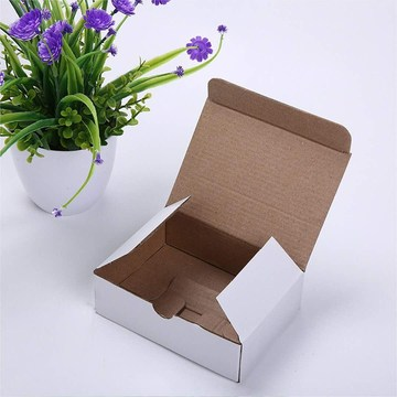 white gift packaging carton box
