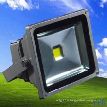 Bridoggux High Brightness 50W LED Floodlight