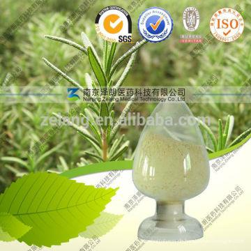 Ursolic Acid Pulver CAS Bearberry Extrakt 98% CAS: 77-52-1