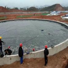 Geomembrana del hdpe de la piscina del polietileno del estanque de 1m m
