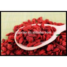 Boxthorn chinois, Goji, Gou Qi Zi, Wolfberry / baie de goji biologique certifié, vrac goji berry prix, goji frais, goji congelé