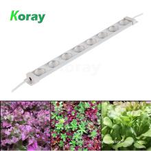 DC24V Waterproof LED Grow Light Bar Full Spectrum Horticulture LED for Hydroponic Vertical Farming