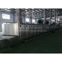 Special mesh belt drier dehydrated vegetables