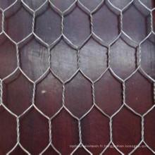 Faisceau métallique hexagonal de clôture de cage d'animaux