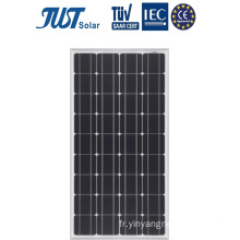 Conception populaire 100W Mono Solar Panels in Cheap Price