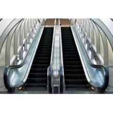 À la vente Ascenseurs de trottoirs Petite Escalade à domicile Prix résidentiel Allemagne Escalator de qualité avec CE Tous les types de marché Hôtel Es