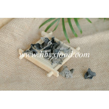 Organic Vegetable Dried Black Fungus with Competitive Price