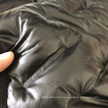 New functional Waterproof Polyester Down Proof Coat Jacket Fabric