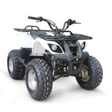 110CC ATV EPA RACING QUAD