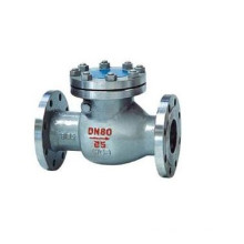 Ss304 Ss316 Dn 80 Stainless Steel Swing Check Valve