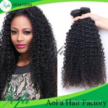 100% unverarbeitete mongolische menschliche verworrenes lockiges Haar Remy reines Haar