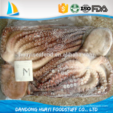 Une des plus délicieuses fruits de mer de haute qualité IQF pieuvre congelée