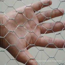 """1/2"""" Galvanized Hexagonal Wire Mesh"""