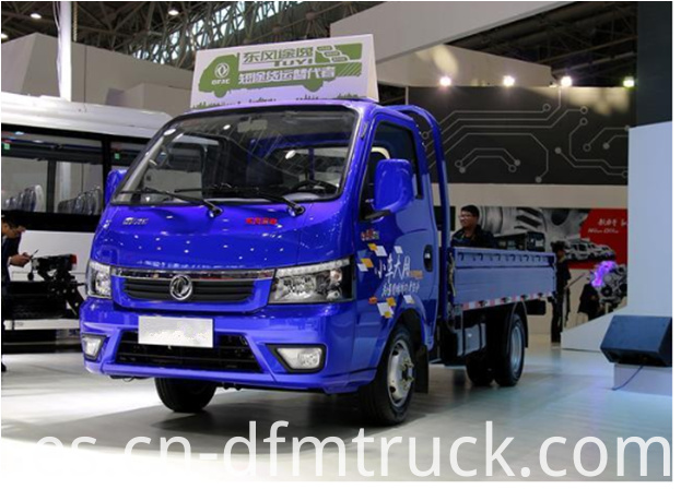Dongfeng light truck (10)