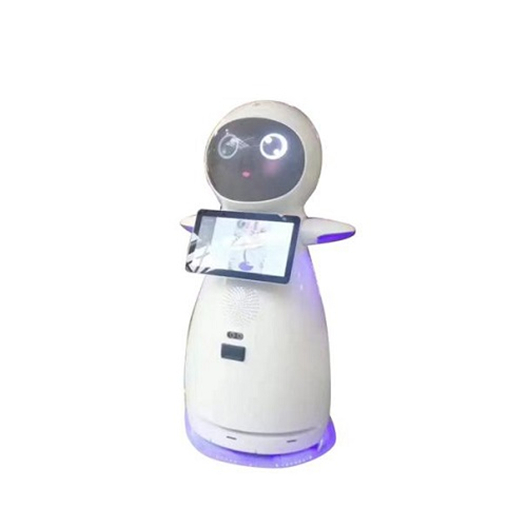 Company Welcome Interactive Talking Robots