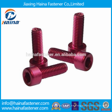 Proveedor de China Mejor precio alto quanlity tornillos de aluminio anodizado its-029