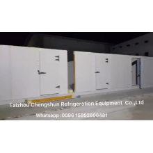 Hot sale Walk-in Unit Storage Refrigeration Deep Freezer Cold Room