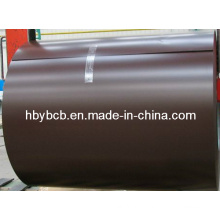 Desinged Prepainted Galvanized Steel Coil (PPGI/PPGL) /Color Coated Galvanzied Steel