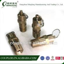 Brass boiler safety valve for air compressor