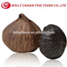 Extrait d'ail noir organique Pure Natural Black GarlicPowder