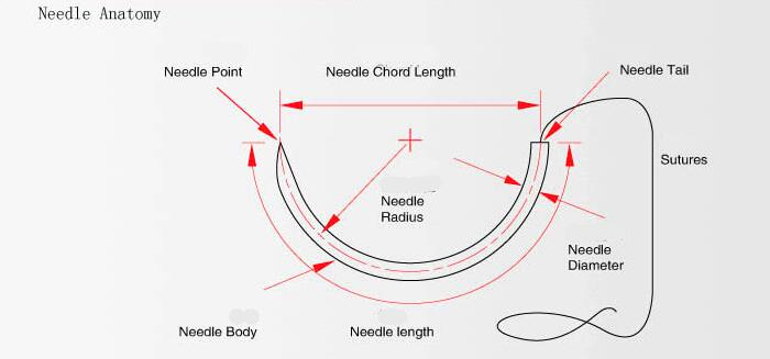 Surgical suture needle