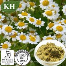 Chamomile Extract Apigenin 0.3%, 98%