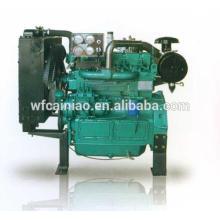 Ricardo-Dieselmotor der besten Qualität benutzt für Technikmaschinen