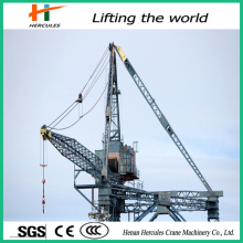 Hot Sale Luffing Tower Crane L220
