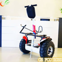 Small Golf Cart with Self Balance Electric Scooter