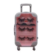 B58 Hitomi private label eyelash box packaging Big Plastic Trolley Case Box with 3 pairs mink eyelash and tweezers
