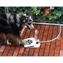 Fonte de água do animal de estimação do cão de Zoomer 2017 NOVO